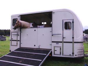 Mit-Pferden-reisen.de informiert: Neue Studie zum Pferdetransport